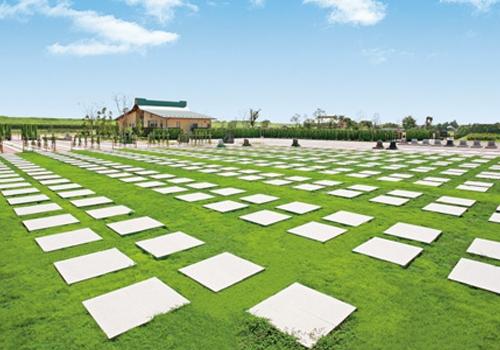 芝生墓地風景