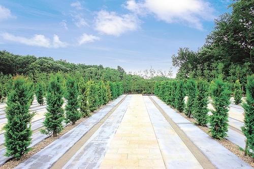 新ゆり天望の丘墓苑は豊かな緑に溢れる霊園です。