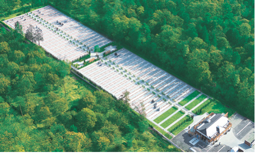 ふじみ野霊園は、自然に囲まれた公園墓地です。