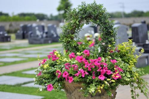 綺麗な花々が迎えてくれます。