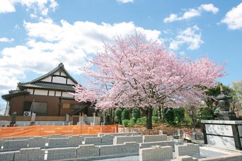 大宮四季彩霊苑は思い出の里 市営霊園から車で3分です。