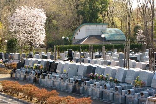 桜の季節の霊園。