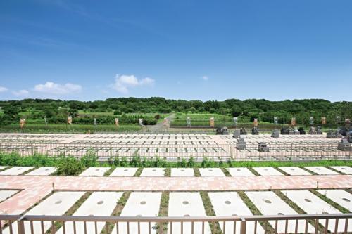 全区画ゆとりの緑地付き墓所