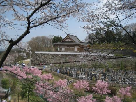 春には桜も咲き乱れ美しい墓域環境となっております。