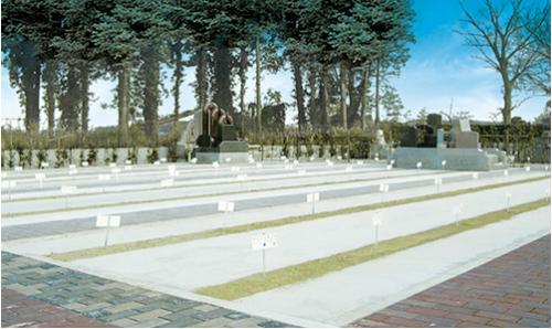 平坦な墓域