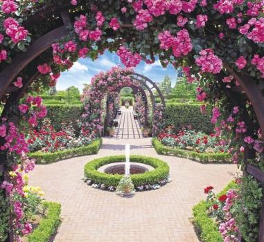 バラが溢れるガーデニング霊園