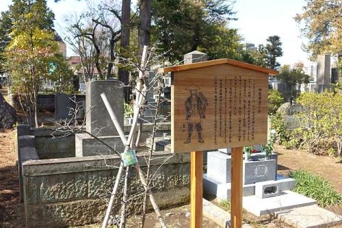 雑司ヶ谷霊園内