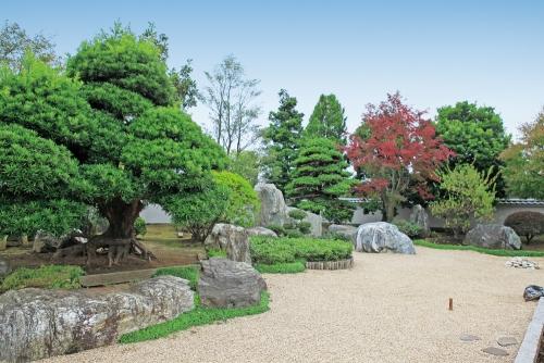 四季折々の日本庭園が美しいです。