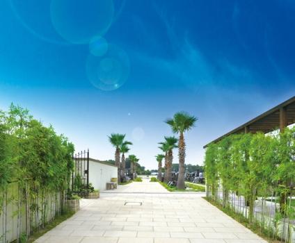 桶川霊園のコンセプトは、南国風庭園です。