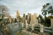 谷中霊園の写真