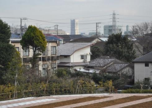 園内からはランドマークタワーが見えます