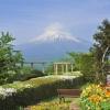ホテルの中庭には花壇があります。季節によっては、色鮮やかな花々と一緒に撮影をしてみては。