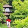 桜や紫陽花、紅葉や椿など四季折々の風景をバックでのお写真となります。100年以上の歴史を誇り重要文化財にも指定された三溪園での撮影は、ふたりの気がより引き締まることとなるでしょう。 ※別途ご料金¥32,400(税込)を頂戴いたします。 ※雨天の場合は、ホテル館内のフォトスポットでの撮影のみとなります。