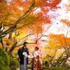 秋のシーズンになると、一面暖かな色調になります。
