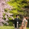 春になると4種類の桜が順番に咲き、美しい庭園となります。